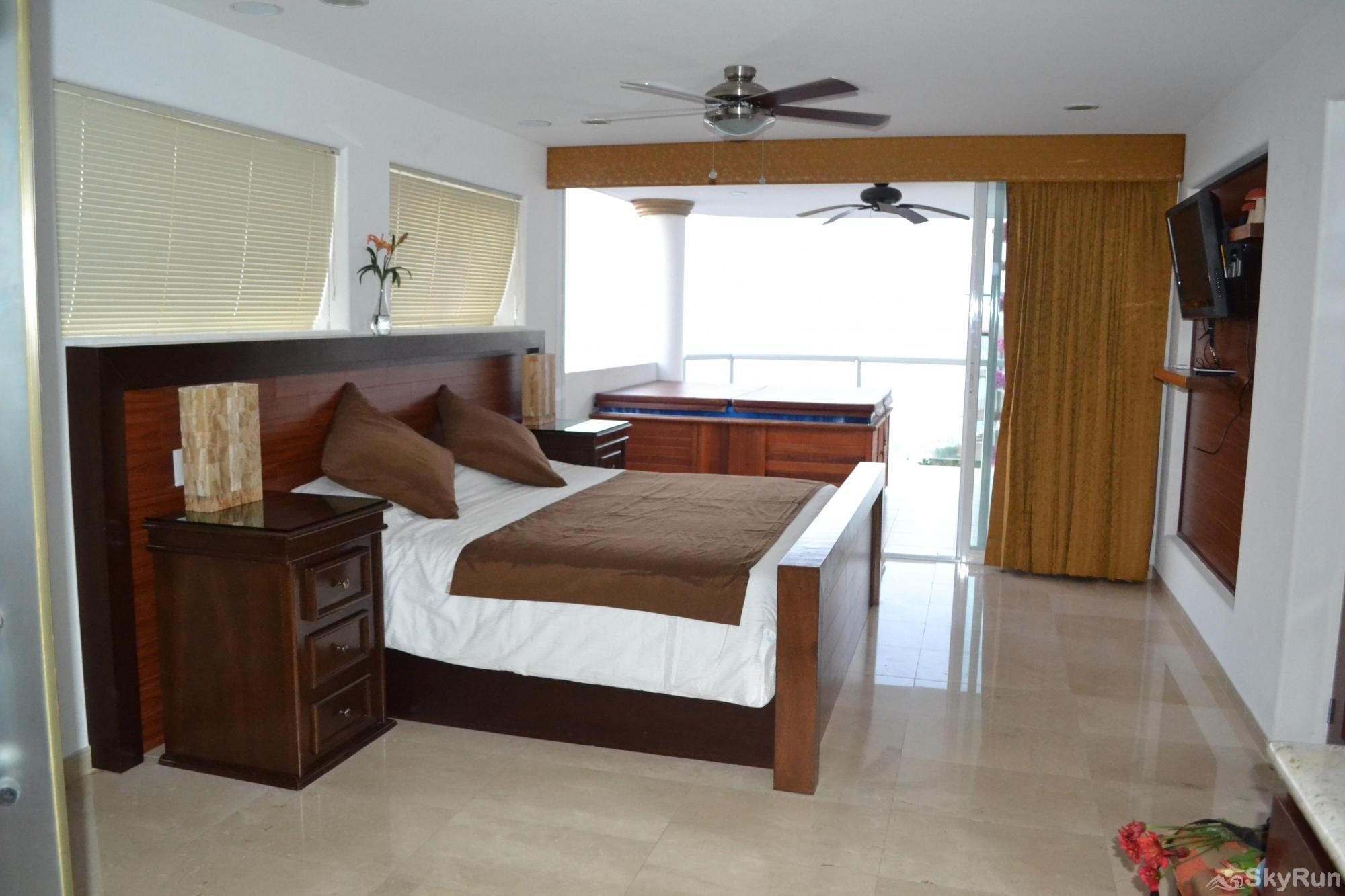 Spectacular Ocean View 1br with Outdoor Pool, balcony!  PV at it's finest Master Bedroom